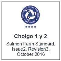 Centro Cholgo