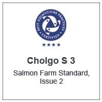 Centro Cholgo S3