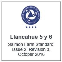 Centro Llancahué 5 y 6