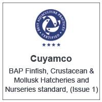 Centro Cuyamco